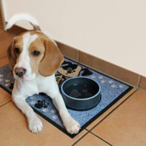 tapis-de-sol-dentree-maison-personnalise-dog-meal-blue